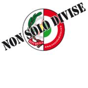 Nonsolodivise.com